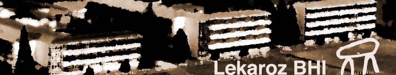 IES Lekaroz